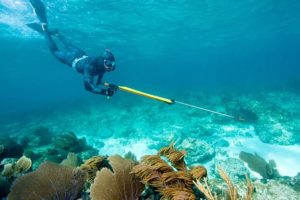 spearfishing-equipment